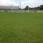 Pitch 8 weeks after renovating